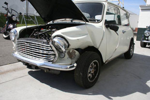 Restoration - Old English White Mini